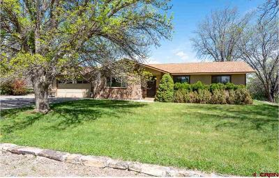 Delta County Single Family Home UC/Contingent/Call LB: 12966 Eckert Estates Road