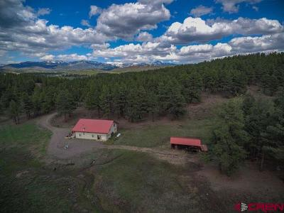 Pagosa Springs Single Family Home For Sale: 2729 County Road 119