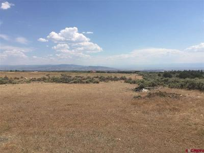 Cedaredge Residential Lots & Land For Sale: Cedar Mesa