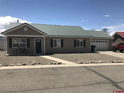 Gunnison Single Family Home For Sale: 103 Mountaineer Drive