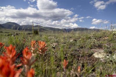Creede Residential Lots & Land For Sale: 323 Diamond Road