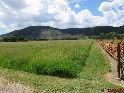 South Fork Residential Lots & Land For Sale: Comanche Trail