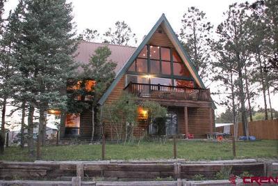 Pagosa Springs Single Family Home For Sale: 286 Mesa Drive