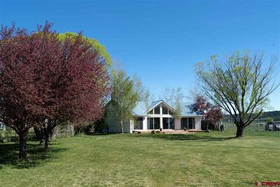 Durango Single Family Home For Sale: 110 Foxtail Lane