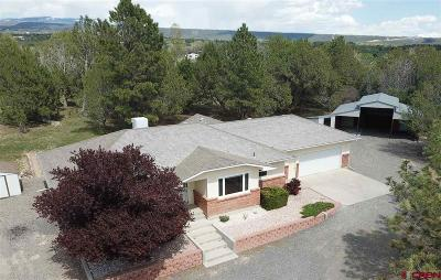 Cedaredge Single Family Home UC/Contingent/Call LB: 16874 Bull Mesa Road