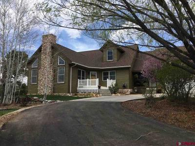 La Plata County Single Family Home For Sale: 402 Valle Escondido Drive