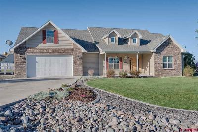 Montrose Single Family Home UC/Contingent/Call LB: 1828 Senate Street