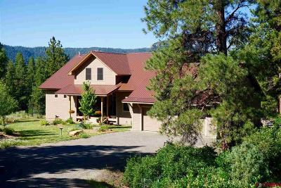 Pagosa Springs Single Family Home For Sale: 457 E Arbol Park Dr