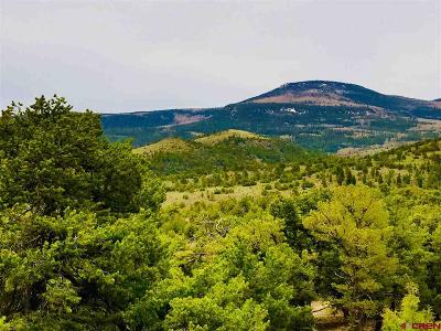 South Fork Residential Lots & Land For Sale: Pinon Hills Road