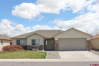 Montrose Single Family Home For Sale: 1132 Weminuche Avenue