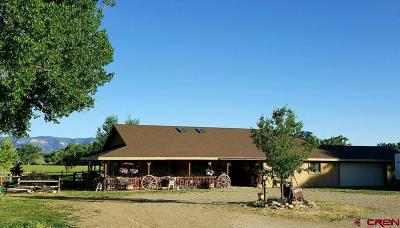 Cortez CO Single Family Home For Sale: $445,000