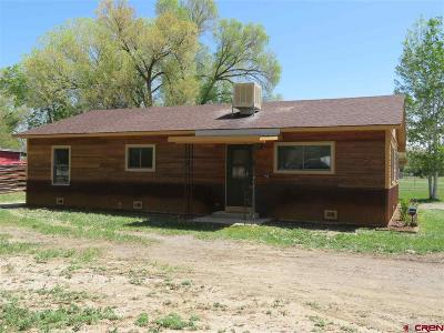 Delta County Single Family Home For Sale: 745 1575 Road