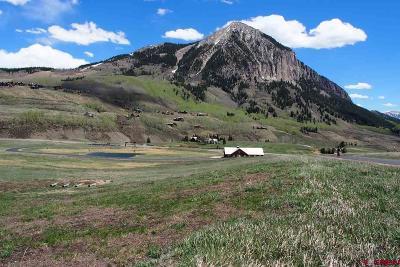 Saddle Ridge Ranch Estates Residential Lots & Land For Sale: 375 Saddle Ridge Ranch Road