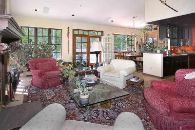 Crested Butte Single Family Home For Sale: 123 Meadow Drive