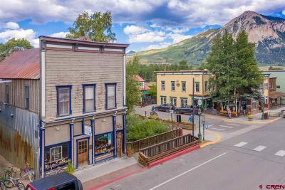 Gunnison County Commercial For Sale: 129 Elk Avenue
