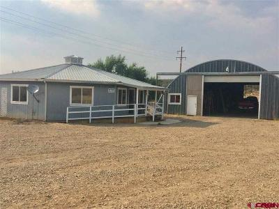 Cortez Commercial For Sale: 29499 Hwy 160