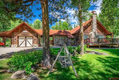 Pagosa Springs Single Family Home For Sale: 4101 County Road 200