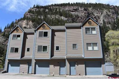 Ouray Condo/Townhouse For Sale: 1246 Champ