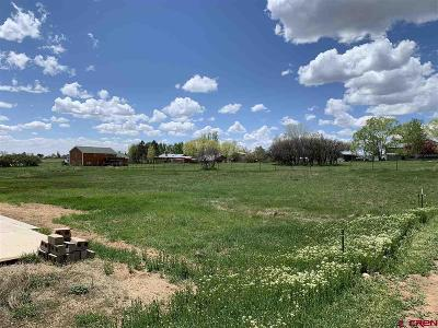 Durango Residential Lots & Land For Sale: 85 Sierra Avenue