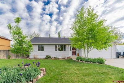 Montrose Single Family Home UC/Contingent/Call LB: 16365 6420 Road