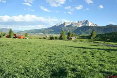 Gunnison County Residential Lots & Land For Sale: 19 Glacier Lily Way