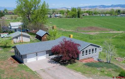 Montrose Single Family Home For Sale: 18600 Highway 550