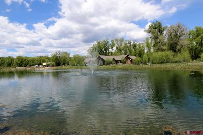 Gunnison Residential Lots & Land For Sale: 141 Kokanee Court