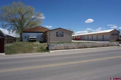 Cortez Commercial For Sale: 116 Henry