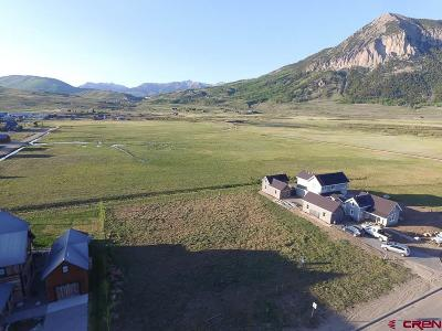 Gunnison County Residential Lots & Land For Sale: 927 Belleview Avenue