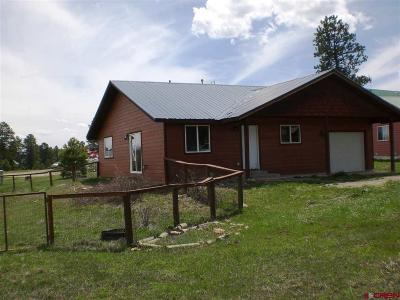 Pagosa Springs Single Family Home For Sale: 55 Navajo Ct.