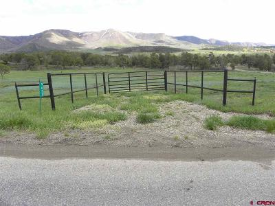 Mancos Residential Lots & Land For Sale: Road 42