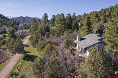 Durango Single Family Home For Sale: 2 Tanglewood Drive