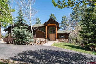 La Plata County Single Family Home UC/Contingent/Call LB: 293 Tripp Creek Road