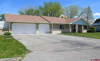 Delta County Single Family Home For Sale: 780 Willow Wood