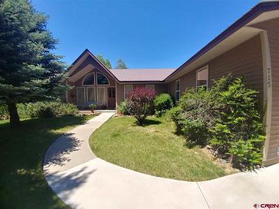 La Plata County Single Family Home For Sale: 715 Westview Drive