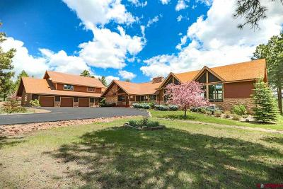 Pagosa Springs Single Family Home For Sale: 2000 Echo Canyon Ranch Lane