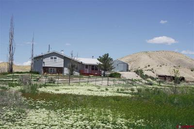 Montrose CO Single Family Home For Sale: $464,950