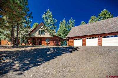Pagosa Springs Single Family Home For Sale: 60 Jj Junction