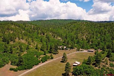 La Plata County Single Family Home For Sale: 7091 Cr 228