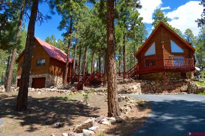 La Plata County Single Family Home For Sale: 847 Blue Ridge Drive
