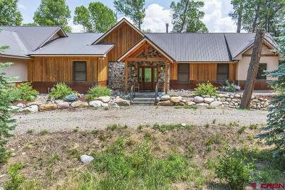 La Plata County Single Family Home For Sale: 7987 County Road 501