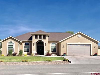 Alamosa Single Family Home For Sale: 715 Cottonwood Circle
