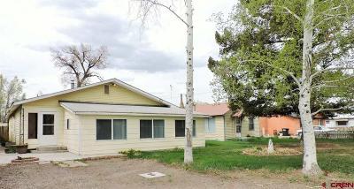 Monte Vista Single Family Home For Sale: 1377 Newcomb Avenue
