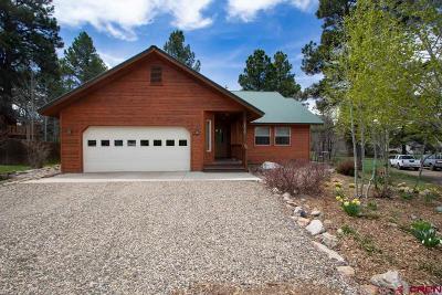 Pagosa Springs Single Family Home UC/Contingent/Call LB: 256 Sundown Circle