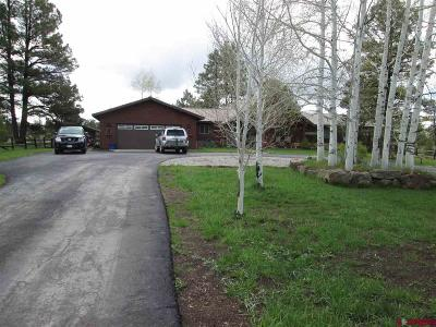 Pagosa Springs Single Family Home For Sale: 60 Stevens Circle