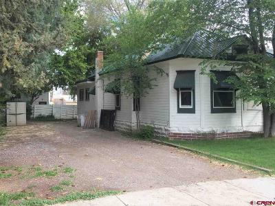 Montrose Single Family Home For Sale: 1129 S 1st Street
