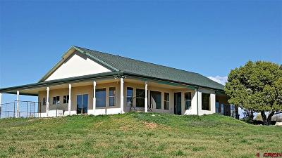 Mancos Single Family Home For Sale: 32767 Road P