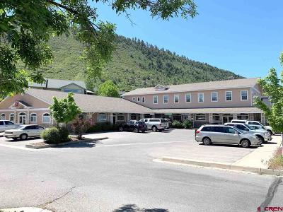 Durango, Bayfield, Cortez, Telluride Commercial For Sale: 100 Jenkins Ranch Road #E1,  E2,