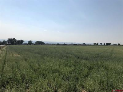 Montrose Residential Lots & Land UC/Contingent/Call LB: 6000 Road