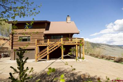 Creede Single Family Home For Sale: 2310 Forest Service Road